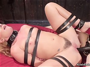 huge-boobed domina anal invasion humps strapped lesbian
